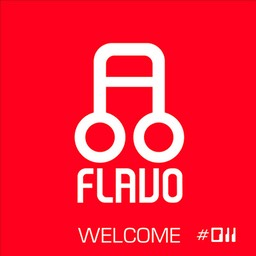 Flavo-011-Dj-Boyko-and-Sound-Shocking---Welcome